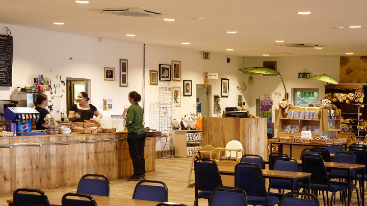 Energy saving LED lamps by Philips creating a clearer vision for the staff at the Dartmoor zoo